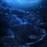 Under A Frozen Surface